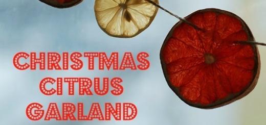 Citrus_Garland_Done_slideshow